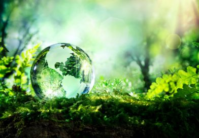 Energiahatékonysági címet nyert a pécsi önkormányzat