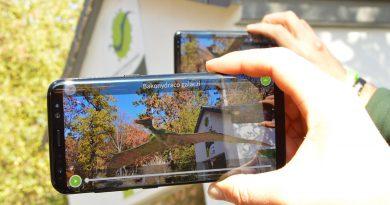 Virtuális, háromdimenziós találkozások a Pécsi Állatkertben